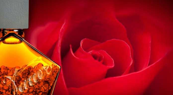 Незабравима женственост - Une Rose Vermeille от Tauer Perfumes